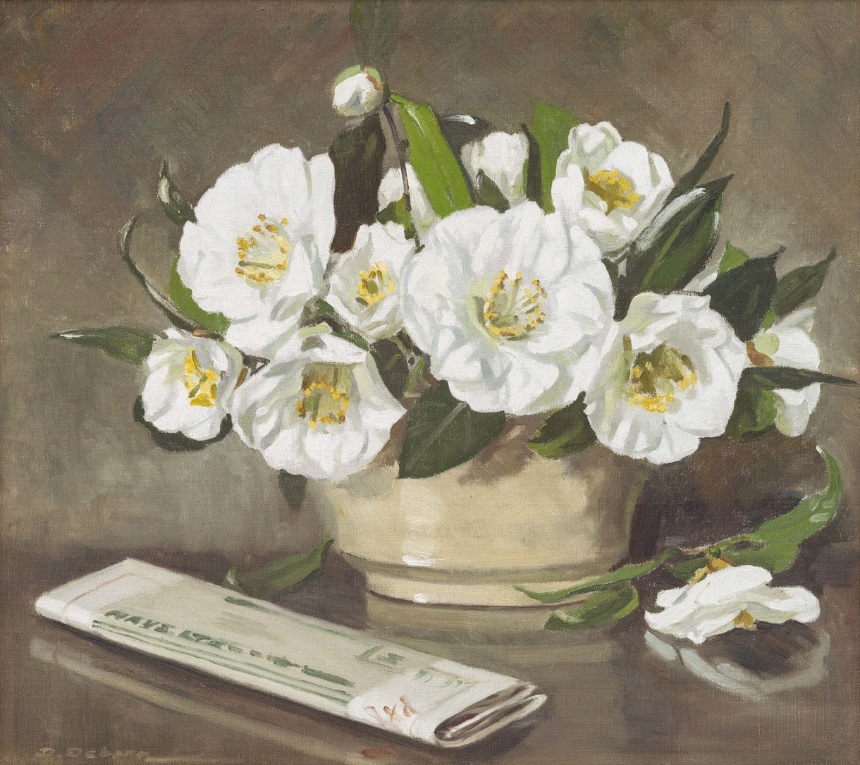 White Camellias Revisited